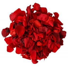 500 Pétales de Roses rouges en soie